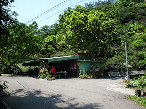 20100329-3.jpg
